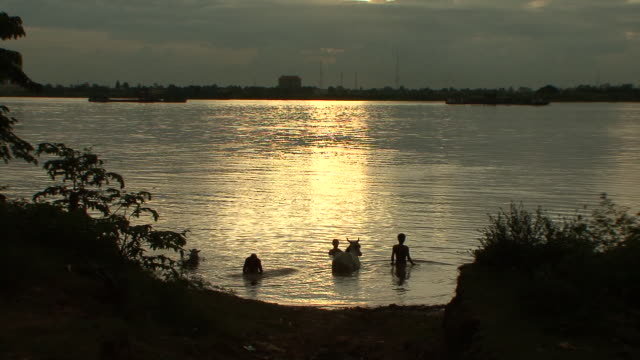 WS View of river and people bathing with cow in mekong river / Phnom Penh, Cambodia