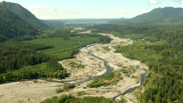 WS AERIAL View of river bed with lake in Quinault valley / Washington, United States