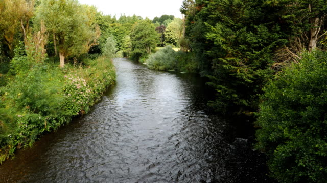 view of river lagan in belfast on the morning - river lagan stock videos & royalty-free footage