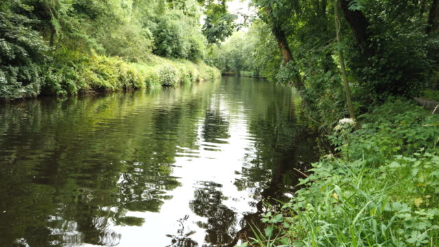 view of river lagan in belfast - river lagan stock videos & royalty-free footage