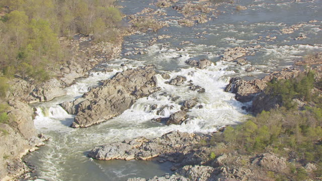 stockvideo's en b-roll-footage met ms zo aerial pov view of river with forest area / great falls, virginia, united states - virginia amerikaanse staat