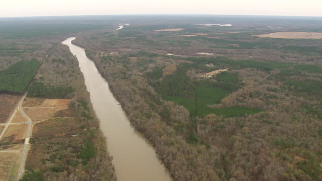 WS AERIAL View of River with forest / Georgia, United States