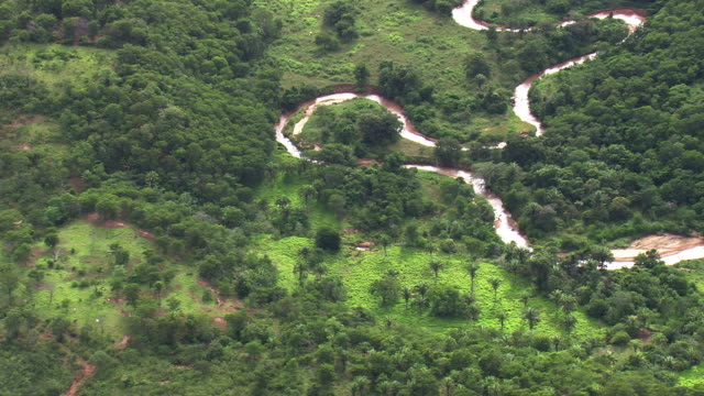 ws aerial view of river with trees/ minas gerais, brazil - minas stock videos and b-roll footage