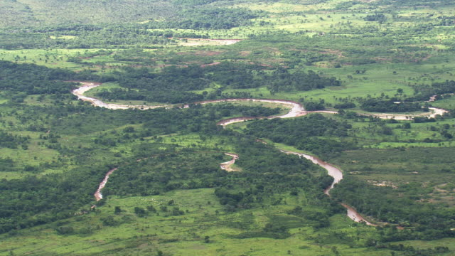 ws aerial view of river with trees / minas gerais, brazil - minas stock videos and b-roll footage