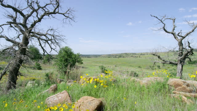 ws pov view of rocky area with grassy hills in the distance / wichita mountains wildlife refuge, oklahoma, united states - wichita stock-videos und b-roll-filmmaterial