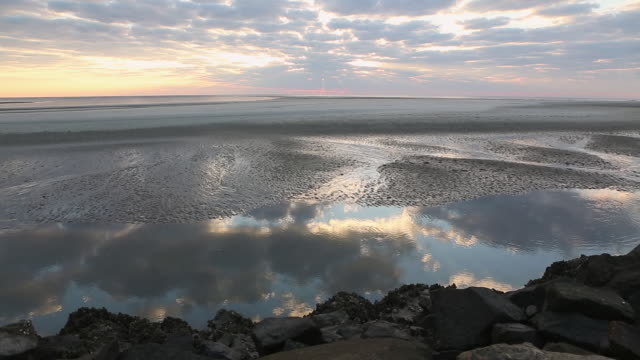 ws pan view of rocky shore line of ocean / st. simons island, georgia, united states - wasservogel stock-videos und b-roll-filmmaterial