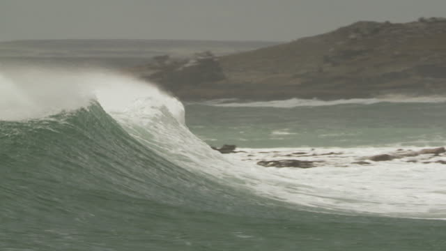 ms pan slo mo view of rolling wave in ocean / elephant beach, falkland islands, falkland islands - falkland islands stock videos and b-roll footage