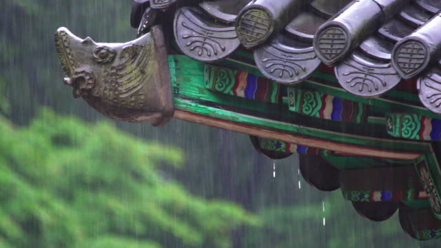 View of roof tile in Changdeok Palace (UNESCO World Heritage Site in Seoul) in the rainy day