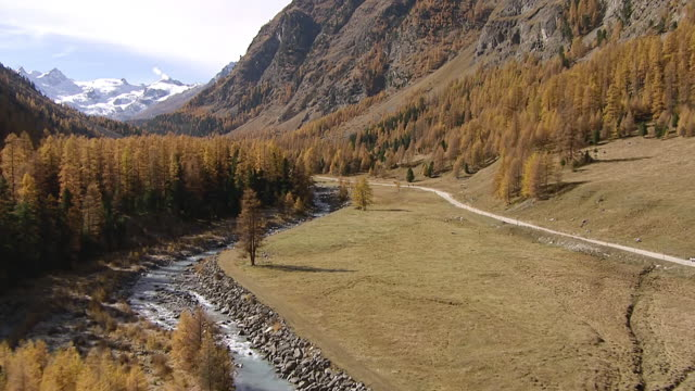 ws aerial view of roseg valley with river in autumn, snowy mountains and glaciers / roseg valley, upper engadin, switzerland - valley stock videos & royalty-free footage