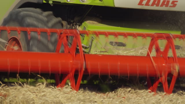 cu view of rotary thresher of modern combine harvester working in wheat field / carmona, andalusia, spain - 2k resolution stock videos and b-roll footage