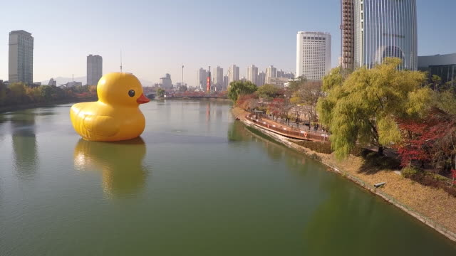 view of rubber duck(project for healing wounds and reliving tension) on the seokchonhosu lake at jamsil - comparison stock videos and b-roll footage