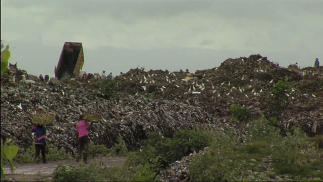 ws view of rubbish dump / bali, indonesia - bali stock videos & royalty-free footage
