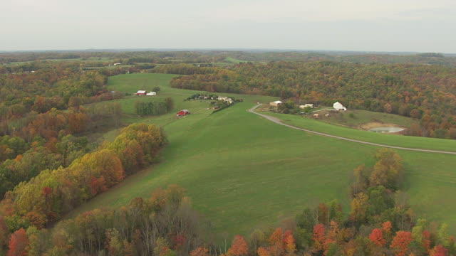 WS AERIAL View of rural Amish farms and forests / Ohio, United States