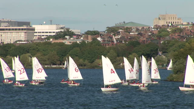 vidéos et rushes de view of sailboats in boston united states - aller tranquillement