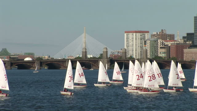 vídeos y material grabado en eventos de stock de view of sailboats on charles river in boston united states - puente leonard p. zakim bunker hill