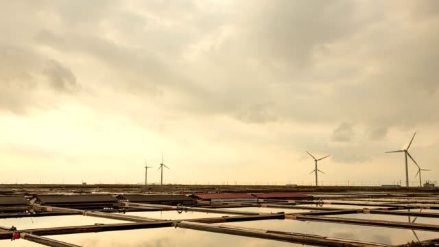 view of salt pans and wind turbines in jeollanam-do, yeonggwanggun, south korea - jeollanam do stock videos & royalty-free footage