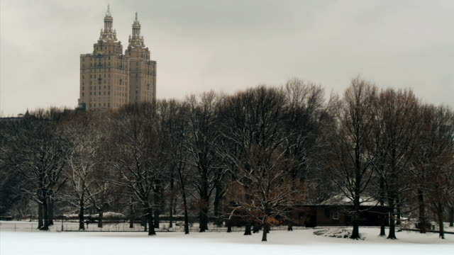 ws view of san remo apartment building from central park in winter / new york city, new york, usa - remo stock videos and b-roll footage
