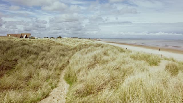 stockvideo's en b-roll-footage met view of sand dunes and grasses blowing in the wind - panning