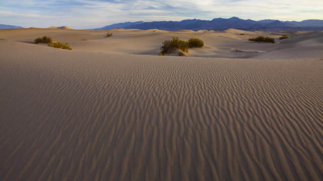 ws t/l view of sand dunes death valley national park / death valley, california, united states   - 固定撮影点の映像素材/bロール