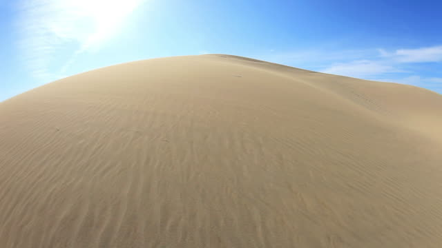 ws view of sand dunes / tottori, tottori prefecture, japan  - sand dune stock videos & royalty-free footage