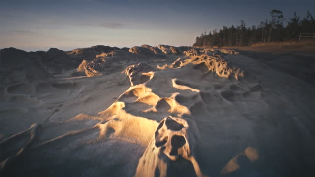 ws pov view of sandstone formations / shore acres state park, oregon, united states  - oregon us state stock videos & royalty-free footage