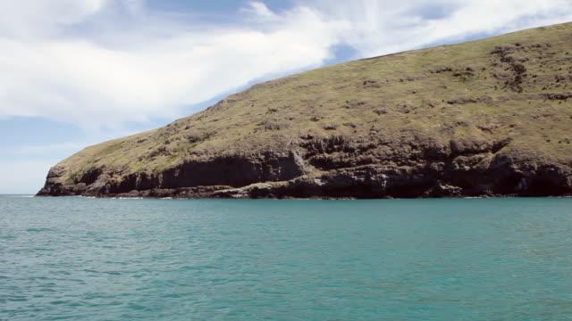 ws view of sea and cliffs / akaroa, new zealand - akaroa stock videos & royalty-free footage