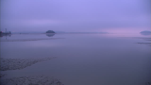 ws t/l view of sea and low tide / chungchungnamdo, south korea - low tide stock videos & royalty-free footage
