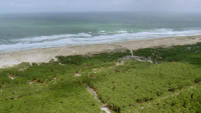 WS AERIAL View of sea coast and dense forest, Les Landes / Aquitaine, France