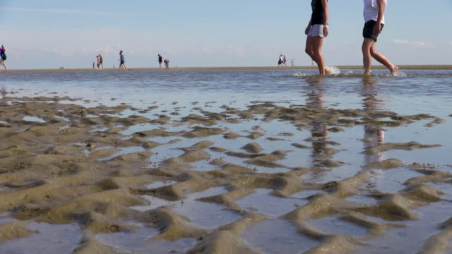 WS View of sea ebb tide at wadden sea ,world heritage natural site, North Sea North Frisia, / St. Peter Ording, Schleswig Holstein, Germany
