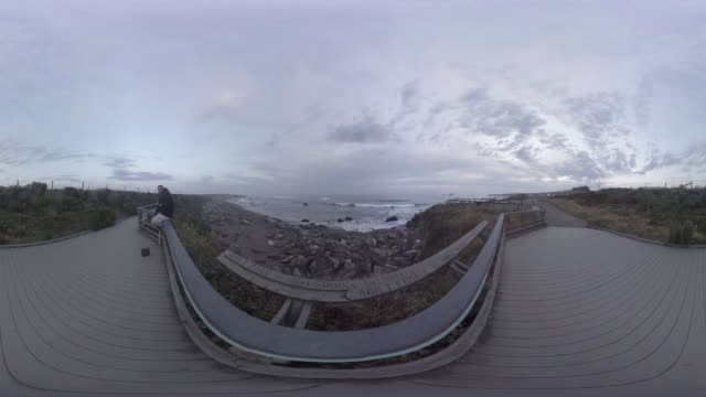 360/VR view of sea lions along the Pacific Coast Highway