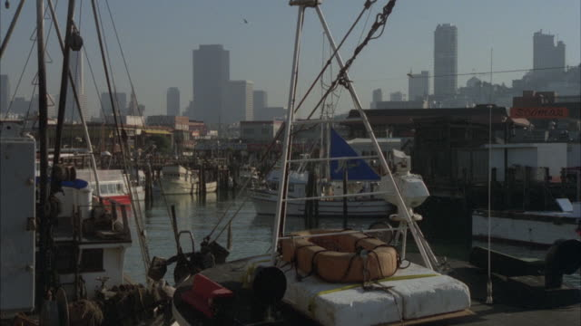 ms view of seagull setting on fishermans wharf / san francisco, california, united states - fisherman's wharf san francisco stock videos & royalty-free footage