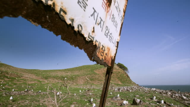 View of seagulls on the island in Ongjin-gun (Natural habitat for endangered birds), Incheon