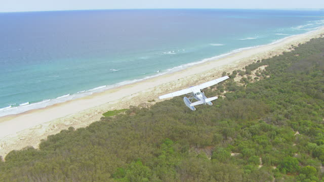 ws aerial ts view of seaplane flying over beach / kings cliff, new south wales, australia - プロペラ機点の映像素材/bロール