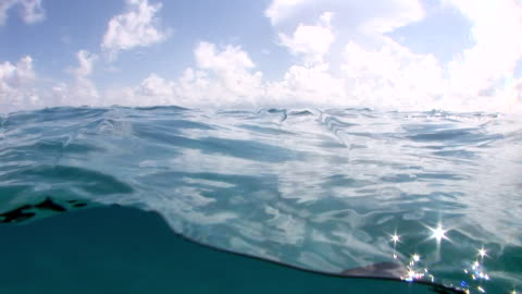 ms view of seascape  audio / florida, united states - water surface stock videos & royalty-free footage