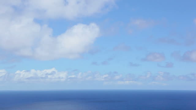 ws t/l view of seascape in pacific ocean / ookala, hawaii, the big island, usa - horizon stock-videos und b-roll-filmmaterial