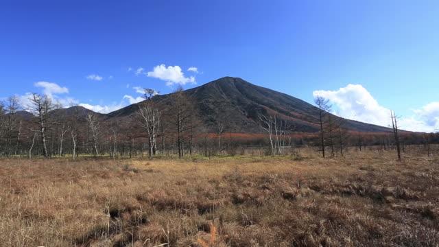 ws pan view of senjogahara at national park / nikko, tochigi prefecture, japan - 神話点の映像素材/bロール