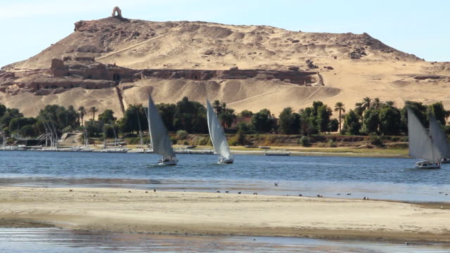 WS View of Several feluccas in distance in front of desert landscape with palm trees / Aswan, Egypt
