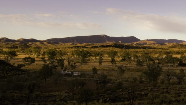 ws t/l pan view of shadows passing across classic outback landscape of gum trees and arid plain / flinders, ranges south australia, australia - south australia bildbanksvideor och videomaterial från bakom kulisserna
