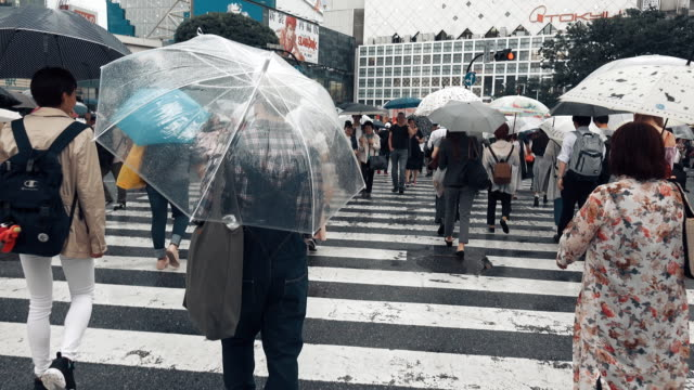 pov view of shibuya crossing tokyo japan - crossroad stock videos & royalty-free footage