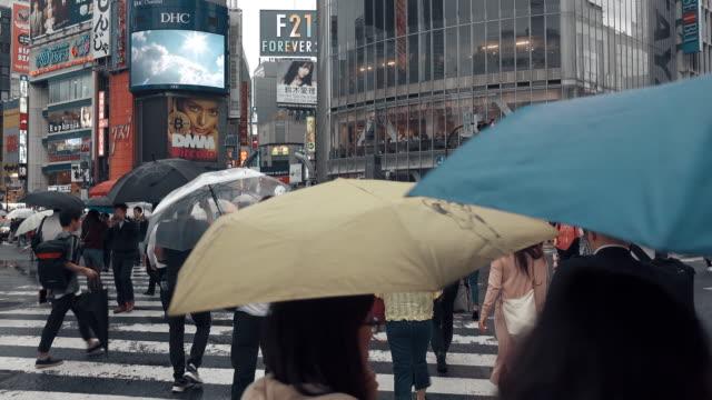 vídeos de stock, filmes e b-roll de opinião de pov do cruzamento tokyo japão de shibuya - placa de estrada