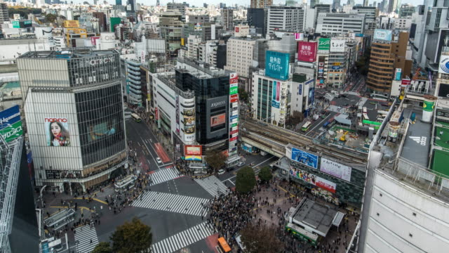t/l ws ha view of shibuya crossing / tokyo, japan - 十字路点の映像素材/bロール