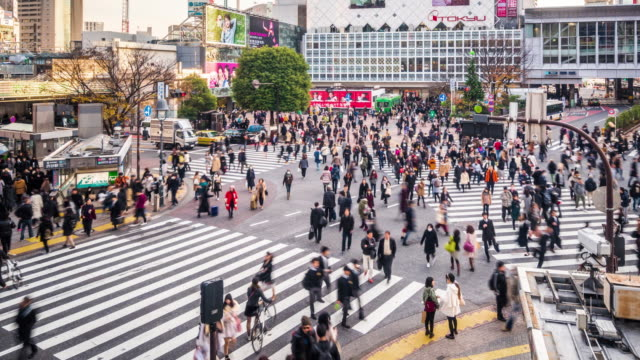 t/l ws ha pan view of shibuya crossing / tokyo, japan - shibuya crossing stock videos & royalty-free footage