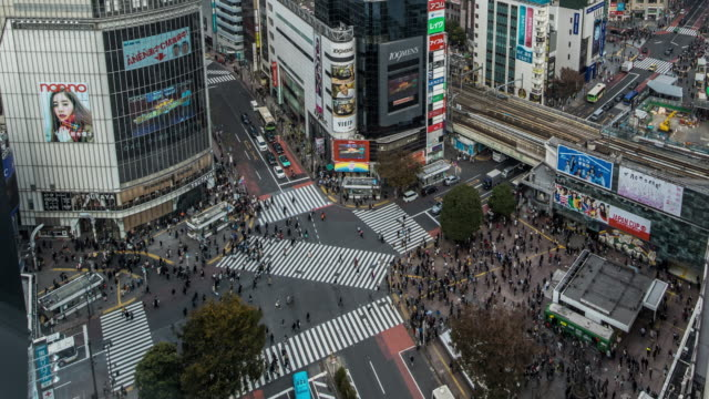 t/l ws view of shibuya crossing / tokyo, japan - crossroad stock videos & royalty-free footage