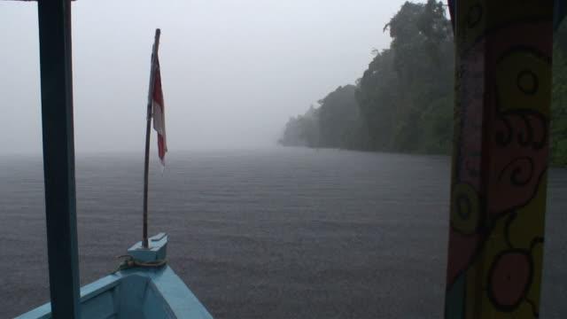 stockvideo's en b-roll-footage met ws pov view of ship moving on river / rio negro, amazonas, brasil - color negro