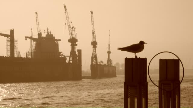 ws view of shipyard at foggy climate / hamburg, hamburg, germany - shipyard stock videos & royalty-free footage