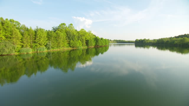 WS AERIAL POV View of Shirley Slough with trees area / Jackson County, Missouri, United States