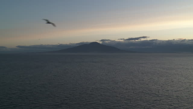 ws view of skyline on ocean at mount vesuvius / sorrento, campania, italy - small group of animals stock videos & royalty-free footage