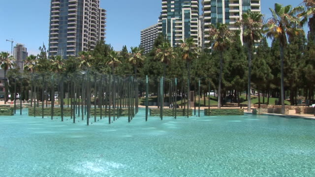 view of skyscrapers in san diego united states - fan palm tree stock videos & royalty-free footage