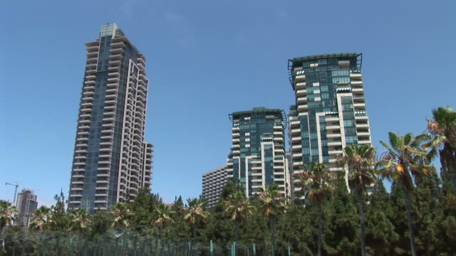 view of skyscrapers in san diego united states - solfjäderspalm bildbanksvideor och videomaterial från bakom kulisserna