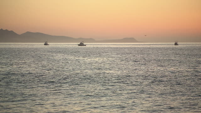 WS View of Small fishing, leisure boats berthed in dusky light and silhoutted hills / Cabo San Lucas, Baja California Sur, Mexico